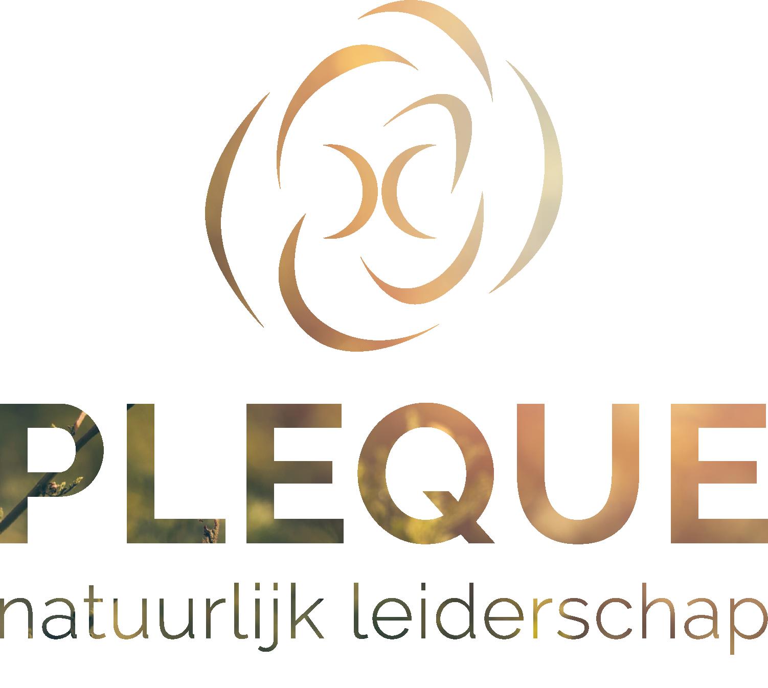 Leonique van Tol | Natuurlijk leiderschap d.m.v. paardencoaching